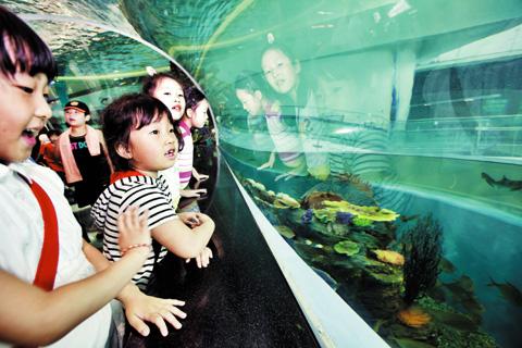 3일 오전, 시범 관람을 위해 국립해양박물관을 찾은 부산 동삼초 1~4학년 어린이들이 원통형 수족관을 구경하고 있다. / 부산=권효빈 영상미디어 객원기자