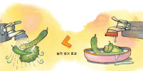 [세상을 바꾸는 즐거운 습관] 잔류 농약 기준