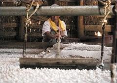 자염법으로 만든 소금.
