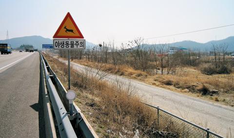 야생동물 출몰을 알리는 '야생동물주의 표지판' 모습. /한국도로공사 제공