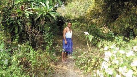 야다브 파?과 그가 만든 울창한 숲.