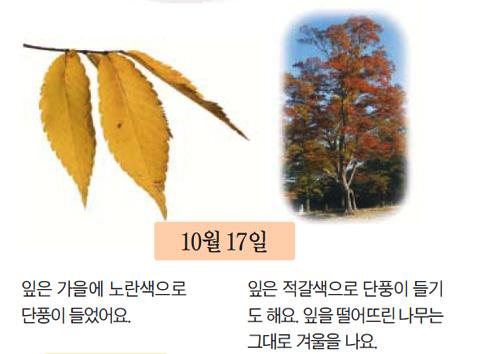 [아는 만큼 보이는 나무]