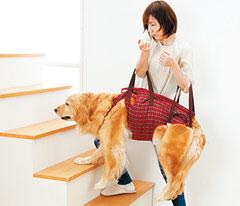 개의 보행을 돕는 '밴드형 포대기'. 고령의 개가 일어서거나 계단을 오르내리기 쉽도록 보조한다.