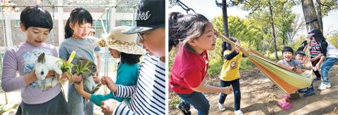 3학년 학생들이 토끼에게 뒷산에서 뜯은 풀을 먹이고 있다. 뒷산은 해먹과 그네가 설치된 '자연 놀이터'다.