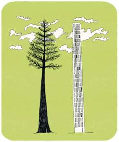 [신비한 생물 사전] 25층 건물만큼 자라는 거대 식물