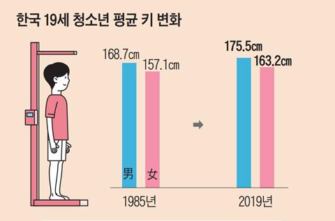 한국 19세 평균 키, 세계 60위권까지 '훌쩍'